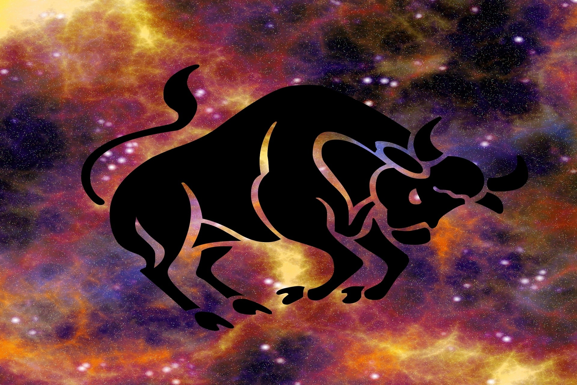 Vedic Astrology |  7 Sessions